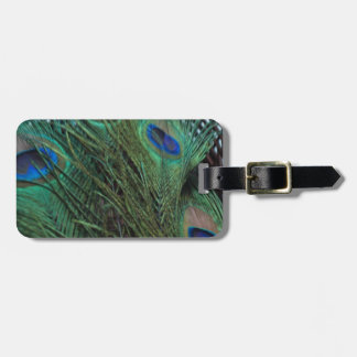 Peacock Feather and a Wicker Basket Bag Tag