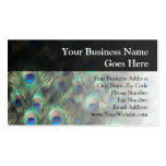 Peacock Feather Background Business Card