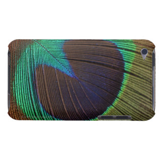 Peacock feather Case-Mate iPod touch case