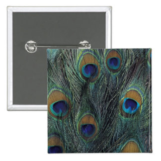 Peacock feather design 15 cm square badge
