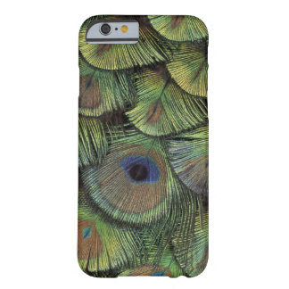 Peacock feather design 2 barely there iPhone 6 case