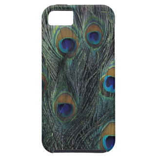 Peacock feather design case for the iPhone 5