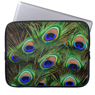 Peacock Feather Display Laptop Sleeve
