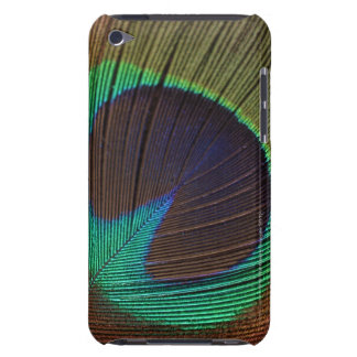 Peacock feather iPod touch cover