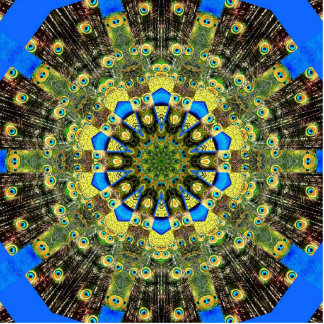 Peacock Feather Kaleidoscope 1 Photo Cut Out