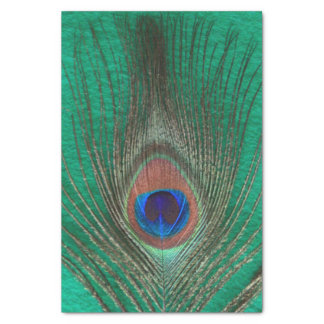 Peacock Feather on Green Tissue Paper