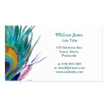 Peacock feather pack of standard business cards
