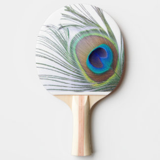 Peacock Feather Ping Pong Paddle