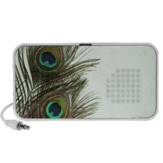 Peacock Feather Speakers