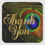 Peacock Feather Thank You Square Stickers