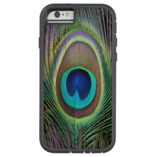 Peacock feather tough xtreme iPhone 6 case