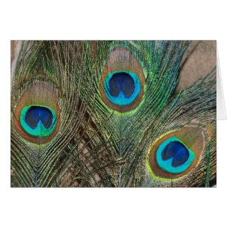 Peacock Feather Wedding Card