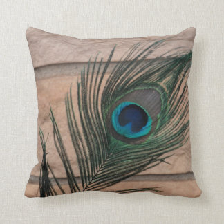 Peacock Feather with Bricks Still Life Cushions