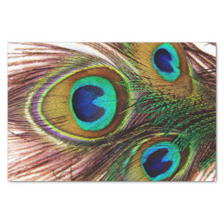 Peacock Feathers 4 Tissue Paper