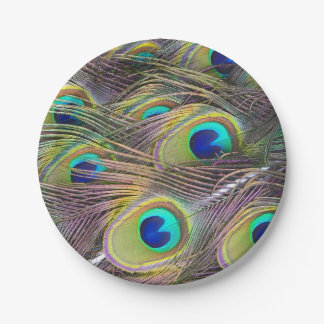 Peacock Feathers 7 Inch Paper Plate