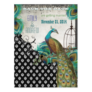 Peacock Feathers Birdcage Save the Date Postcard