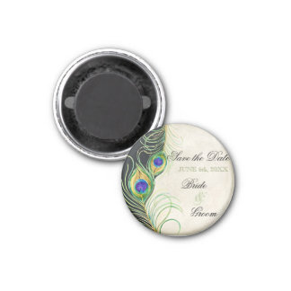 Peacock Feathers Black Damask Save the Date 3 Cm Round Magnet
