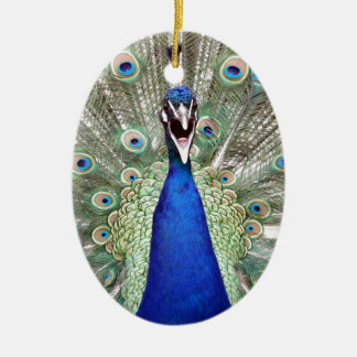 Peacock Feathers Ceramic Ornament
