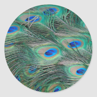 Peacock Feathers Classic Round Sticker