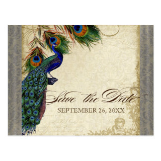 Peacock & Feathers Formal Save the Date Silver Postcard
