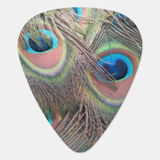 Peacock Feathers Guitar Pick