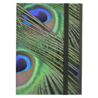 Peacock Feathers Cover For iPad Air