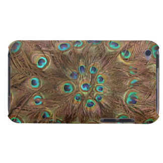 Peacock feathers iPod touch cover