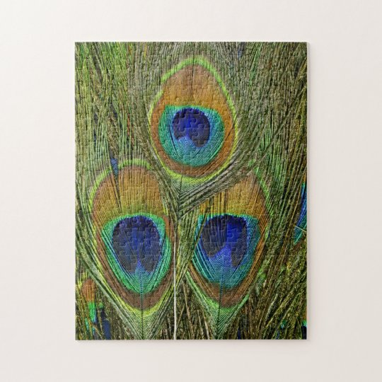 Peacock Feathers Jigsaw Puzzle