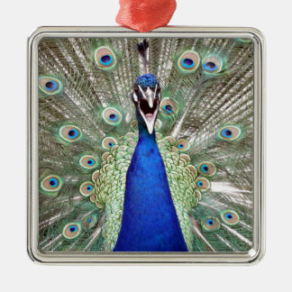 Peacock Feathers Metal Ornament