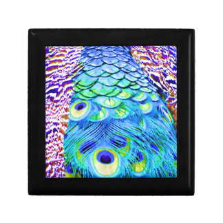 Peacock Feathers Multi Colors Gift Box