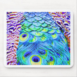 Peacock Feathers Multi Colors Mouse Pad