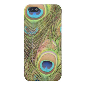Peacock Feathers Phone Case iPhone 5/5S Covers