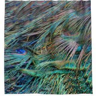 Peacock Feathers Rainbow Colors Shower Curtain