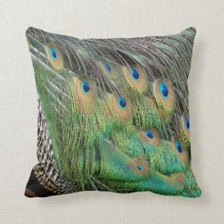 Peacock Feathers Tan Green And blue Colors Cushion