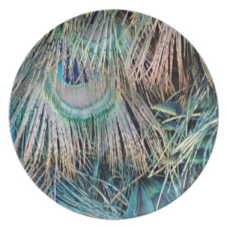 Peacock Feathers Tan Green And blue Plate