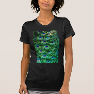 Peacock Feathers Tshirt
