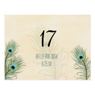 Peacock Feathers Wedding Table Card Postc
