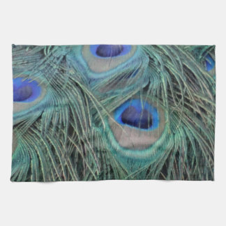 Peacock Feathers With Eye Spots Tea Towel