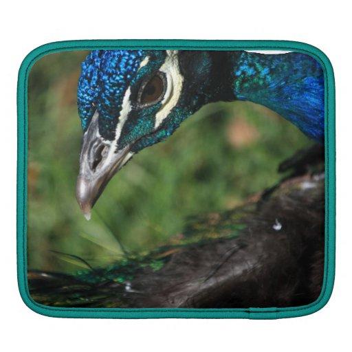 Peacock iPad Sleeves