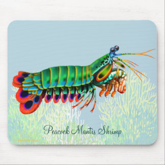 Peacock Mantis Shrimp Reef Animal Mousepad
