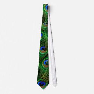Peacock Neckties