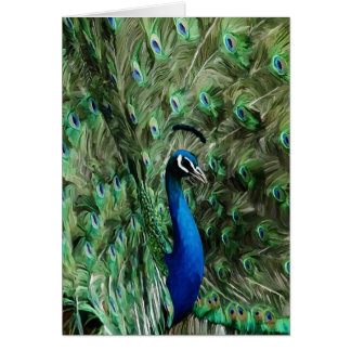 Peacock note care card