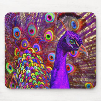 Peacock of a million colors mouse pad