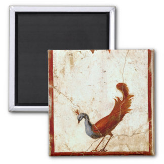 Peacock on Fresco Ancient Roman Antique Painting Square Magnet