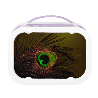Peacock Peafowl Bird Lunch Boxes