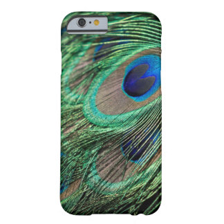 Peacock Photo Barely There iPhone 6 Case