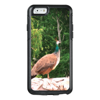 Peacock Photo OtterBox Apple iPhone 6/6s Symmetry OtterBox iPhone 6/6s Case