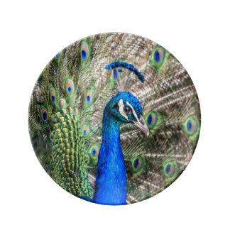 Peacock Plate Porcelain Plate