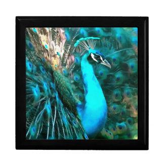 Peacock Plumage Gift Box
