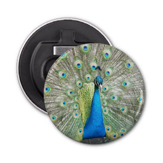 Peacock Plumage Photo Bottle Opener